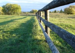 buchinger_fence_5x7